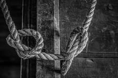 knots (Steve Stanger) Tags: wood blackandwhite bw barn rural rope knots d7000 silverefexpro nikond7000
