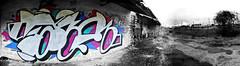 s.a.n.e.r (SaNeR hVa KgB) Tags: paris wall train writing silver painting graffiti fat letters hangar fast railway can spot peinture chrome rails writer graff mur campagne flop couleur bombe lettres picardie throwup kgb wildstyle hva rapide handstyle oise lettrage saner ptdq