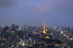 Tokyo cityscape (keiko.com) Tags: sky cloud japan tokyo evening nikon  tokyotower   tokyobay gettyimages d7000
