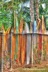 Surfboards in a Row Oahu Hawaii (Julie Thurston) Tags: park vacation canon fence palms fun island happy hawaii colorful surf oahu board decoration surfing palm palmtree surfboard hawaiian tropical local recreation hdr sights daytrip pacificisland fenceline hawaiianvacation ilovehawaii hawaiiisland tropicalvacation surfboardfence localstyle ilovesurfing boardfence tropicalhawaiiisland