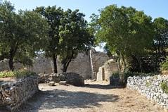 Château_d_Allègre_04.JPG_-_©_Philippe_Nicolas