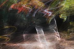 DSC_0479 (AC Fisher) Tags: longexposure autumn trees sunlight lightpainting abstract fall forest experimental surreal cameratoss icm lightplay intentionalcameramovement