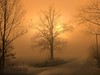 IMG_3609 sunset fog (pinktigger) Tags: road sunset italy mist tree fog italia day country countryroad friuli fagagna ruby3 flickrdiamond feagne saariysqualitypictures absolutegoldenmasterpiece blinkagain ruby10 ruby20 photographyforrecreationclassic