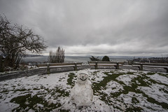 small snowman (Nullality.Nu) Tags: seattle snow cold weather cat canon washington snowy sigma wideangle 8mm oki seattlesnow superwideangle 816mm