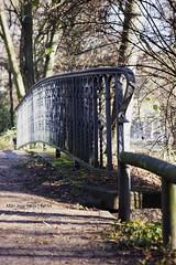 IMG_0492 (Capitn pan) Tags: parque puente rbol otoo da berln mygearandme {vision}:{car}=0502 {vision}:{outdoor}=0876
