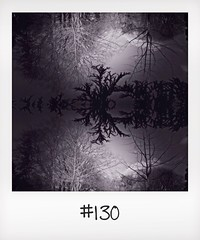 "#DailyPolaroid of 5-2-14 #130 • <a style=""font-size:0.8em;"" href=""http://www.flickr.com/photos/47939785@N05/12410422233/"" target=""_blank"">View on Flickr</a>"