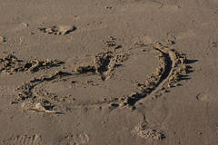 Heart of sand (Damian Gadal) Tags: california beach nikon nikond100 september d100 2007