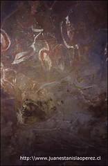 Hermosos petroglifos relativos al culto del hombre pájaro en la cueva Kai Tangata. Domingo 3 de febrero 2002.