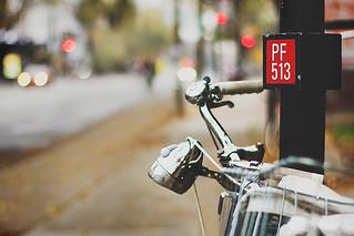 PF-513