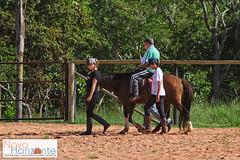 Equoterapia (1 sesso) (Rodnei Reis Fotografia Sacramento/MG/BR) Tags: horse minasgerais love brasil amor cavalo equitation deficiente novohorizonte equitao hippotherapy equoterapia