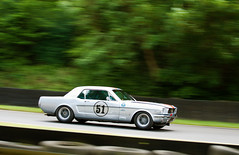 Masters Pre 66 Touring Cars Ford Mustang (Nicholas King) (motorsportimagesbyghp) Tags: fordmustang motorracing motorsport brandshatch nicholasking masterspre66touringcars fiathemastershistoricfestival