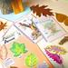 Proyectos Centros Educativos Asturias