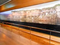 Polarium (Going to the Zoo with Trebaruna) Tags: valencia zoo aquarium spain oceanografic loceanografic loceanograficvalencia aquariumvalencia