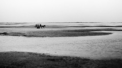 at the heart of padma (Extinted DiPu) Tags: canon camera 24mm prime photography enamur reza dipu lifescape lifestyleofbangladesghipeople lifestyle sand iver cart horse human race people peopleofpadma water sky scout exploring explore inexplore outdoor monochrome