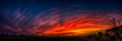 Sunburst (DonMiller_ToGo) Tags: cloudsonfire hdr cloudporn clouds sunsetmadness sunsets nature outdoors 3xp sky sunsetsniper hdrphotography d810 goldenhour florida