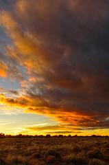 DSC_0051-53 sunset along 180 hdr 850 (guine) Tags: sunset clouds plants highdesert kaibabplateau hdr qtpfsgui luminance