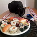 sushi Kat by QFS_mlp