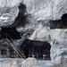 Cavernas habitadas por monges atualmente
