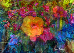 Frivolous (brillianthues) Tags: flowers floral flower nature abstract colorful collage photography photmanuplation photoshop