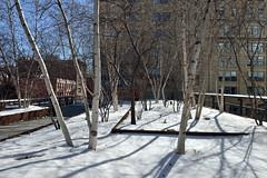Gansevoort Woodland (Eddie C3) Tags: newyorkcity nycparks friendsofthehighline parks meatpackingdistrict highline highlinepark