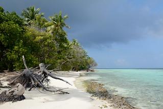 Omadhoo / އޮމަދޫ (Maldives) - Beach
