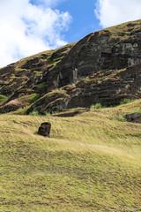 I've Fallen & I Can't Get Up (fuzzball5) Tags: easter island moai head rapa nui rano raraku chile tufa volcanic ash quarry gate 1 2017