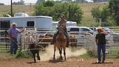 DSC04150a (Garagewerks) Tags: horse oklahoma sport race america cowboy child country barrel american rodeo cowgirl countryliving barrelracing barrelrace