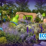 6 The Ecover Garden at Hampton Court Flower Show thumbnail