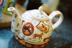 teapot (Kkeina) Tags: horses film home kitchen analog 35mm 50mm tea olympus pot teapot manual om1