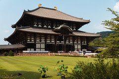 Daibutusu-den (Marmontel) Tags: temple shrine daibutsu nara japon todaiji budhist budhism boudhisme prfecturedenara
