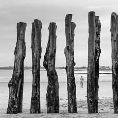 Jogging (Michel Couprie) Tags: sea blackandwhite bw mer france beach scale composition canon eos sand brittany noiretblanc sable bretagne nb 7d poles jogging runner plage saintmalo chelle ef35f14l lunagallery