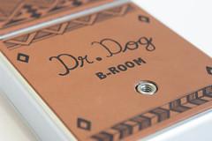 Dr. Dog - SX-70