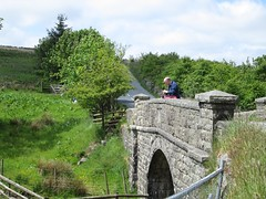 Ockery Bridge Dartmoor (Bridgemarker Tim) Tags: dartmoor princetown devonbridges ockery