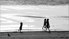 on the seashore - i (nevil zaveri) Tags: ocean girls sea people blackandwhite bw india playing bird beach water girl monochrome silhouette kids children photography blog kid photographer child play photos action stock running run images photographs photograph leisure crow raven zaveri silhoutte gujarat stockimages rituals travelogue bhaat gujrat nevil navratri navsari norta medharbhaat nevilzaveri