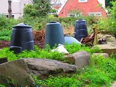 Compost Corner (alexinatempa) Tags: swansea wales compostbin dunvant