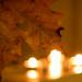 Love Autumn 316365
