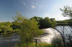 Rotherham Waterways 4