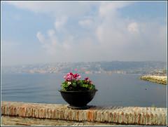 La célèbre baie de Naples (LILI 296...) Tags: mer fleur pierre ciel naples nuage mur italie baie bégonia potée canonpowershotg12 croisièremagiqueméditerranée