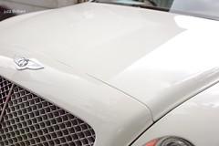 pic17 Bentley White