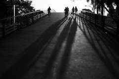 fim de dia (*Ολύμπιος*) Tags: light sunset shadow people luz walking pessoas walk sãopaulo ombra ombre persone pôrdosol ibirapuera persons lightshadow sombras luce parquedoibirapuera luzesombra ibirapuerapark fimdedia