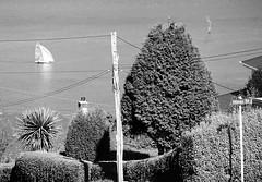 ravensbourne (travelling-light) Tags: newzealand otago dunedin