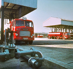 Esso Terminal - Mid 1960's (colinfpickett) Tags: bedford famous octopus petrol esso tanker leyland tk classictrucks vintagetrucks