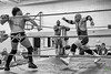 Tag Team (Rock Steady Images) Tags: bw men sports corner canon eos wrestling events professional equipment mat 7d processing handheld 200views ropes 50views topaz fiasco tagteam pwa 25views niksoftware bypaulchambers canonef2470mmf28iiusm lightroom4 photoshopcs6 rocksteadyimages