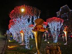 Merry Christmas Y'all (backup1940) Tags: christmas lights driveby houstontexas canonpowershot 2013