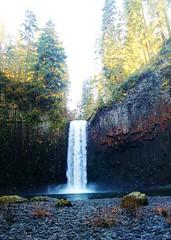 Abiqua Falls (birdie eagle birdie) Tags: nature oregon waterfall hiking hike waterfalls abiqua