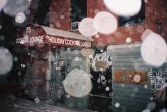 Holiday (Lucas Henry Ezekiel Anderson) Tags: new nyc newyorkcity friends newyork film brooklyn 35mm photography cool olympusstylusepic photographers ishootfilm pointandshoot portra filmphotography kodakportra400 kodakportra filmsnotdead photographersontumblr lucashenryezekielanderson