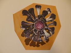 Acrylic painting, 10x9.5inches (louisaroselynch@gmail.com) Tags: plant hot flower painting acrylic madeira aeonium zwartkop