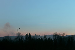 (ange_lore) Tags: sunset castle birds forest canon landscape scenery poland polska bolkow lowersilesia 1100d angelore