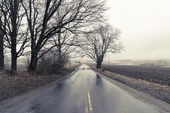 Rainy Road (jpitha) Tags: ny dark landscape day cloudy foggy glen
