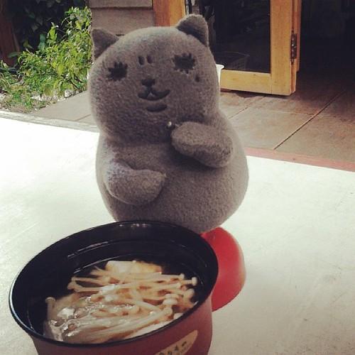 มิโซ๊ะซุปฝีมือกะเหรี่ยงอินเตอร์หร่อยสุดสุดฮะ #เหมียวฟินมาก